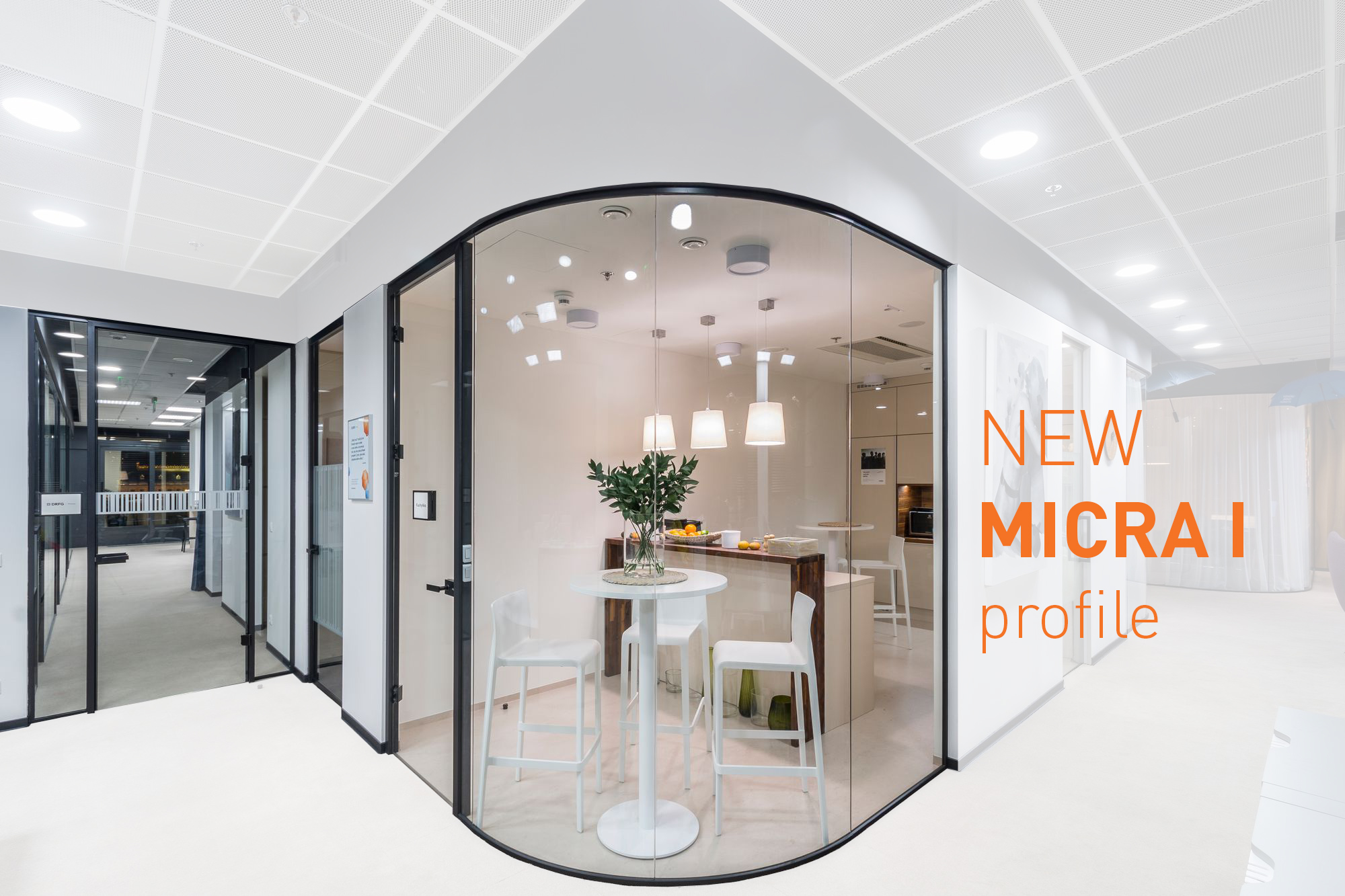 MICRA I. New profile