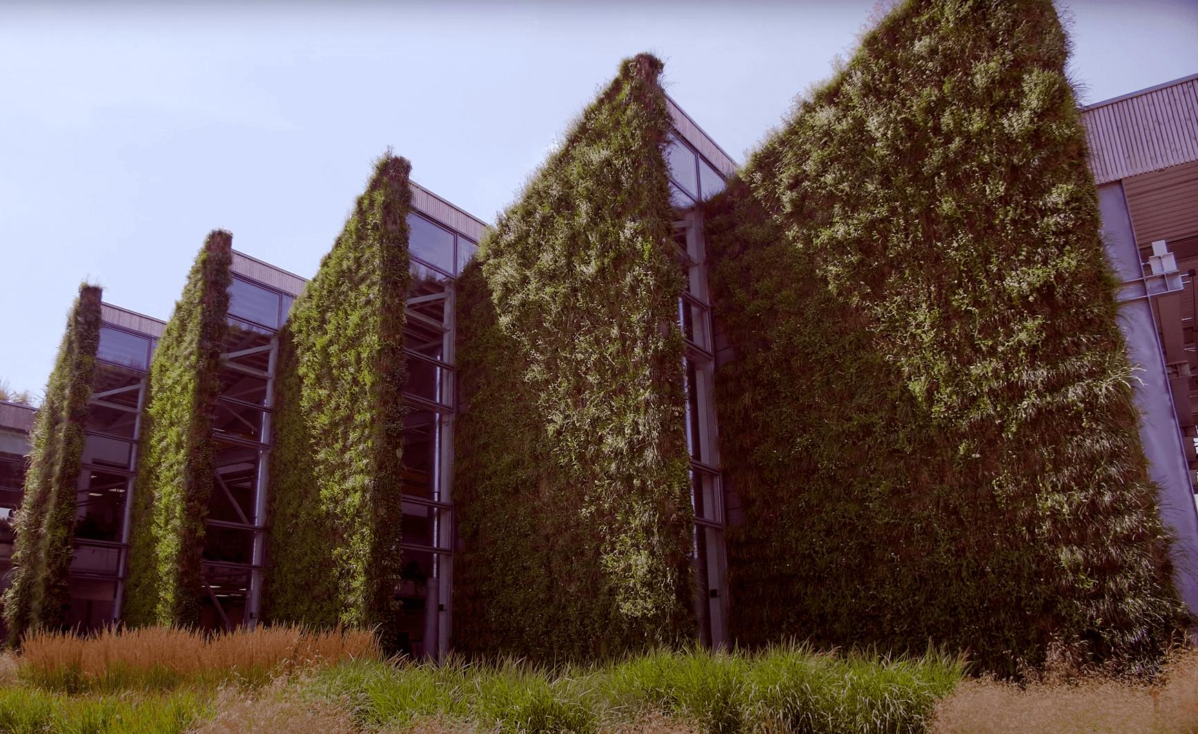 Zöldben pompázó vállalati központunk a kamera szemével