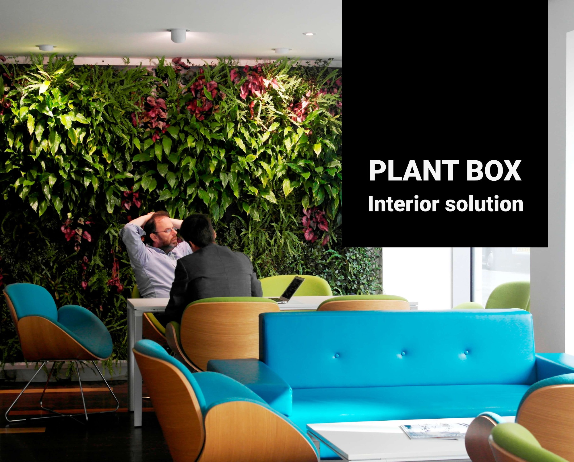 Interior living walls