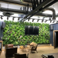 Indoor-PlantBox-Living-Wall-Chichester-550x550