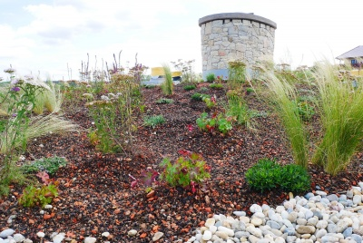 A green roof will enhance any house